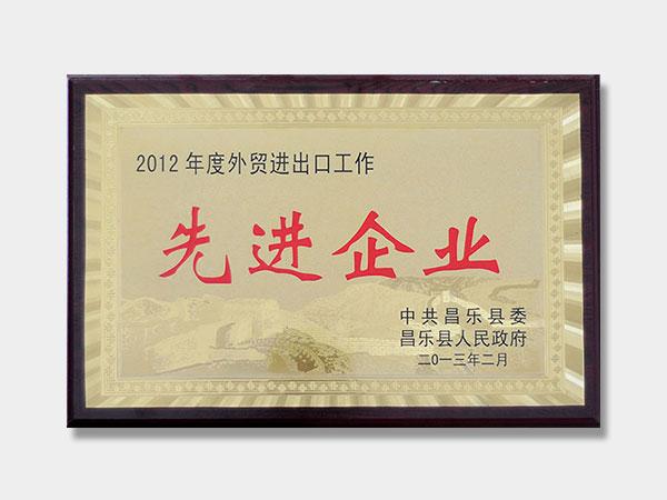 2012年度外贸进出口先进企业