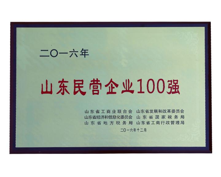 2016 Top 100 Private Enterprises in Shandong
